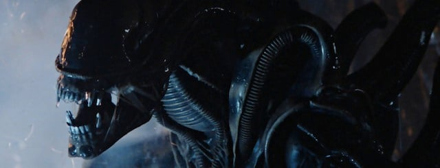 Don't Expect Any Alien Xenomorphs in Prometheus 2,