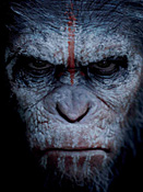 Fox Dates Dawn of the Planet of the Apes Sequel