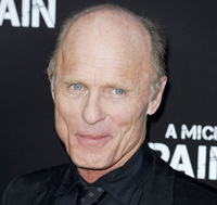 Ed Harris Boards Bad Robot's Westworld